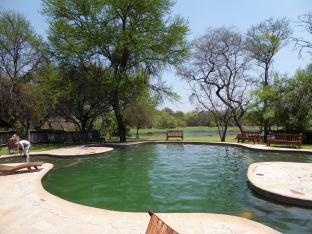 Antelope Park pool
