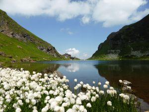 Wildseeloder lake